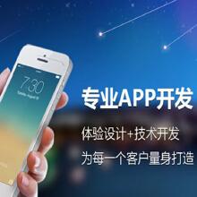 威客服务:[101417] App开发