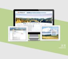 网站建设-门户网站