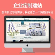 企业网站建设/企业网站定制开发/PC站/PC+手机