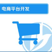 威客服务:[102910] 电商平台开发