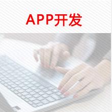 威客服务:[104093] 手机App开发