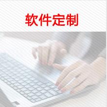 威客服务:[104092] 软件定制
