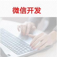 威客服务:[104090] 微信公众号、微信小程序、微网站、微分销
