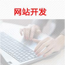 威客服务:[104091] 网站开发