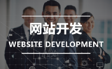企业网站 门户网站