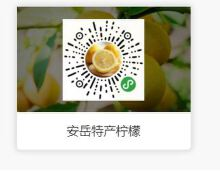 安岳特产柠檬