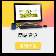 威客服务:[106078] 企业展示型网站/营销型/电商/资讯/门户/电商型网站建设 支持定制开发