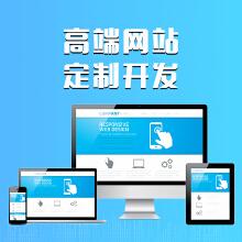 威客服务:[92653] 总监级企业功能网站定制开发