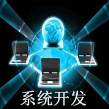 威客服务:[108016] 系统开发