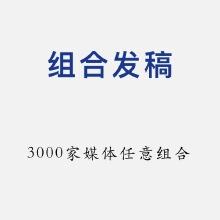 威客服务:[108904] 组合发稿业务
