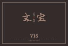 文宝VIS(部分展示)