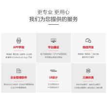 威客服务:[109696] 办公软件定制开发