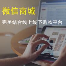 威客服务:[109573] 【心淼信息】微信商城/微商城
