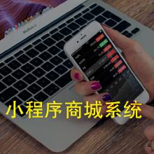 威客服务:[109649] 【心淼信息】小程序商城系统