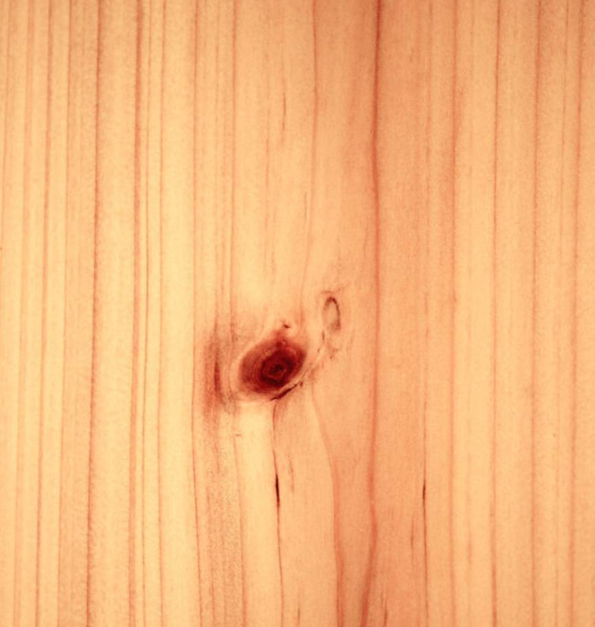杉木纹背景图