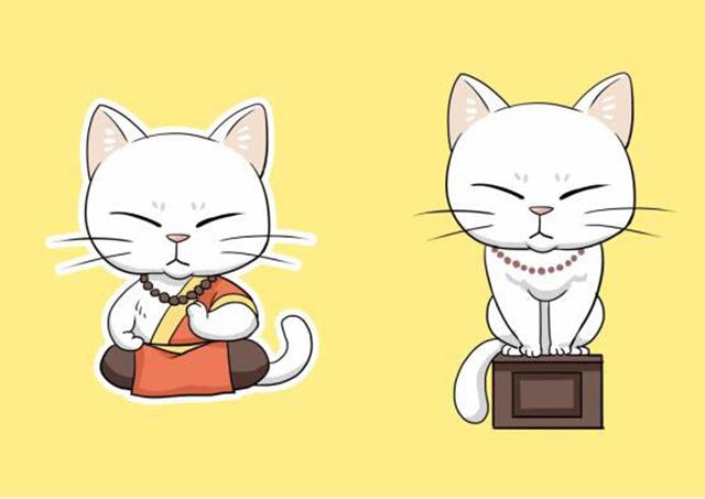 """温情满满,她为这只""""猫住持""""设计了新形象"""