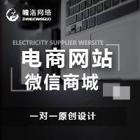 威客服务:[110804] 电商网站
