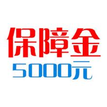 威客服务:[110821] 保障金5000元
