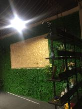 威客服务:[111010] 装饰绿植墙