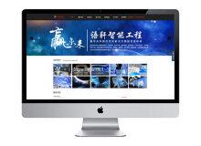 语轩智能-深圳蚂蚁网络网站建设案例
