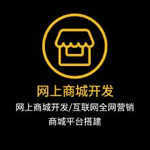 威客服务:[111273] 网上商城开发