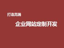 威客服务:[111351] 网站开发网站快速建设企业网站制作官网定制