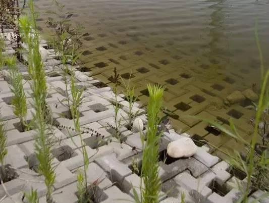 河道湿地景观设计汇总大全!