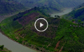 望谟县农业产业