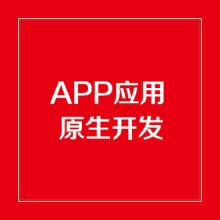 威客服务:[113383] APP原生开发/APP套壳