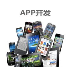 威客服务:[113941] APP开发