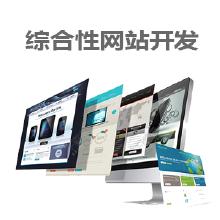 威客服务:[113943] 综合性网站开发