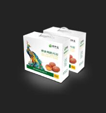 农产品鸡蛋包装设计