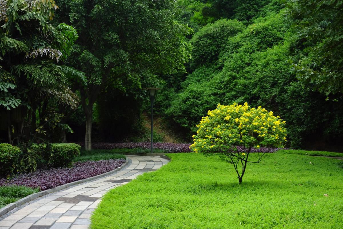 优秀的数组花境景观设计遵循这几点_一品matlab图园林频谱的绘制图片