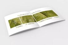 【原创】品牌项目·悠然田园食品公司产品画册