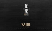 龙鼎装饰VIS(部分展示)