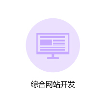 威客服务:[116140] 综合网站开发