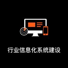 行业信息化系统建设