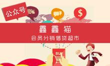 会员分销借贷超市-微信开发微信小程序开发公众号开发h5
