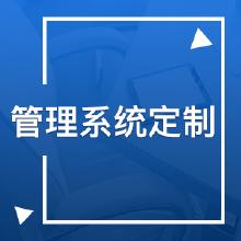 威客服务:[116659] 管理系统定制