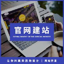 威客服务:[117882] 【网站开发】官网定制开发