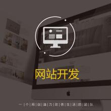 威客服务:[113747] 网站开发