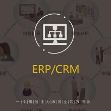 威客服务:[113767] ERP/CRM