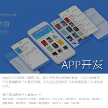 威客服务:[119548] 手机端APP开发