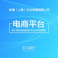 威客服务:[118181] 电商平台开发
