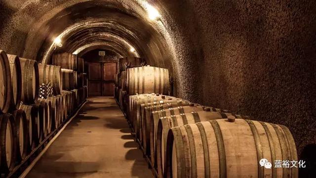 酒窖怎么设计比较好?10个国内外酒窖设计案例欣赏