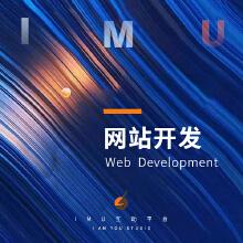 威客服务:[121393] 网站开发