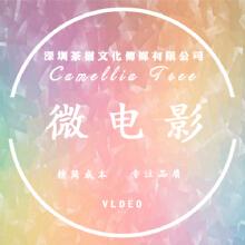 威客服务:[121832] 【微电影】病毒视频制作创意视频拍摄视频剪辑特效包装抖音视频营销短视频