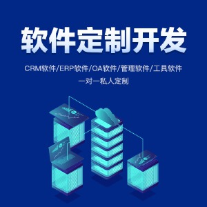 软件开发CRM ERP OA系统开发 企业管理 行业 工具
