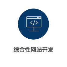威客服务:[123335] 综合性网站开发