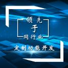 威客服务:[58190] 定制功能开发